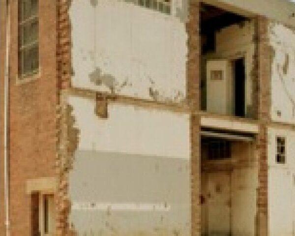 Hapishanede Direnişin Sesleri, Tuğçe Özdemir - Constitution Hill